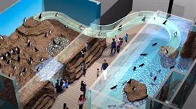 桃園Xpark水族館將於8/7開幕。(圖/翻攝自Xpark 官方Youtube)