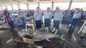 東港黑鮪魚捕獲量11年新高