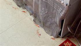 房間地上突冒「清晰血痕」。老鼠受傷(圖/翻攝自爆廢公社公開版臉書)