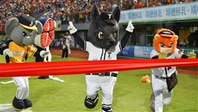 萊恩、小翔、魚頭君、Amigu、歐告在台南球場比賽跑步。(圖/統一提供)