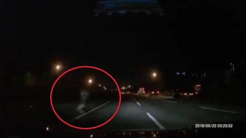 國道驚見白色身影 翁橫衝嚇壞駕駛