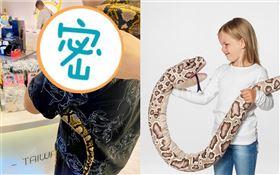 逛廟口驚見IKEA蟒蛇娃娃,結果是真的。(圖/民眾提供)