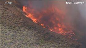 美國加州灌木林大火 恐燒超過1000英畝 圖/翻攝自AP影音