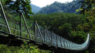 國人憑證 12處森林遊樂區免費入園
