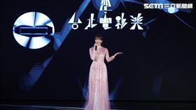 林志玲驚喜現身台北電影節。(圖/台北電影節提供)