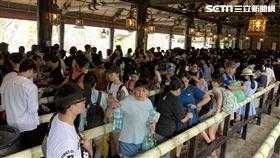 六福村,暑假人潮,民眾提供