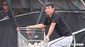 統一獅總教練林岳平。(圖/記者王怡翔攝影)