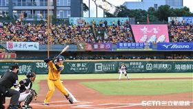 台南棒球場中信兄弟球迷。(圖/記者王怡翔攝影)