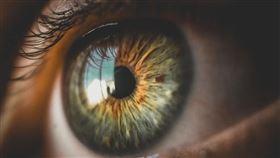 眼睛(Pixabay)