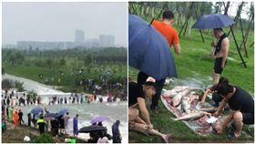 湖水暴漲…中國人不要命衝湖中撈魚 目擊者:超過100人,圖/翻攝自微博