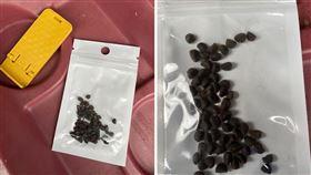 美國維吉尼亞州和猶他州有民眾收到不明種子,疑似是來自中國,當局已通告居民不要種植任何來路不明的種子。(圖取自twitter.com/VaAgriculture)