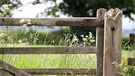 土地,農園。(圖/Pixabay)