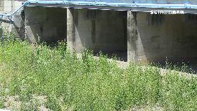 野溪變水道1300