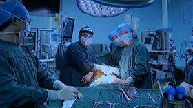 中國大陸,婦人,腫瘤,子宮,心臟,靜脈內平滑肌瘤(圖/翻攝看看新聞)