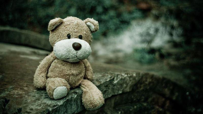 14萬懸賞一隻泰迪熊 原因超催淚