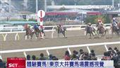 東京大井賽馬場 買馬券中英都會通