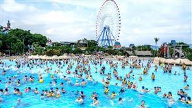 麗寶樂園,馬拉灣,翻攝自臉書粉專