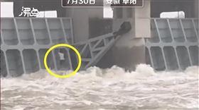 中國,安徽,豪雨,疏洪道,釣魚(圖/翻攝自沸點視頻)