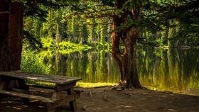 公園,湖泊,野餐,露營,湖邊(示意圖/翻攝自Pixabay)