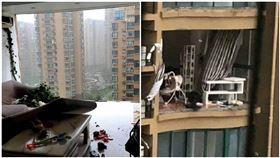 颱風襲中國!整片窗被吹碎 老婦11樓被強風拉出墜樓身亡,圖/翻攝自南方都市報微博