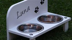 (圖/Pixabay)狗糧,狗飼料