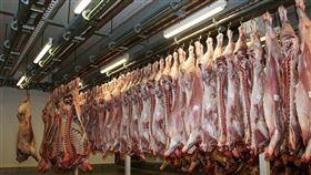 比利時史塔登市長6日表示,一間豬肉加工廠至少有50位員工接受2019冠狀病毒疾病檢測呈陽性。(示意圖/圖取自Pixabay圖庫)