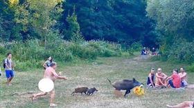 ▲裸男擋住交通被揍一拳;裸男追母豬,要奪回被刁走的包包。(圖/翻攝自推特)
