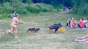 德國柏林魔鬼湖,裸體男追逐野豬,因為包包被叼走了。(圖/翻攝自Adele Landauer 臉書)