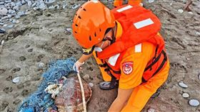 海巡埋葬身纏漁網的海龜(圖/翻攝自「海巡署長室 Coast Guard」臉書)