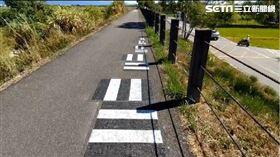 宜蘭道路現特殊符號。(圖/翻攝畫面)