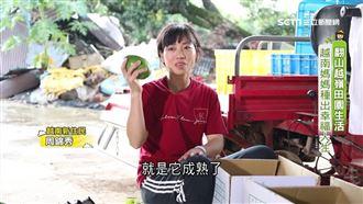 越南媽媽幸福人生 酪梨檸檬田園生活