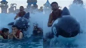 中國水上樂園,海嘯玩海豚釀悲劇!(圖/翻攝自微博)