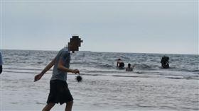 小琉球,海膽,外籍,石頭,敲死(圖/翻攝自臉書《小琉球聯盟》)