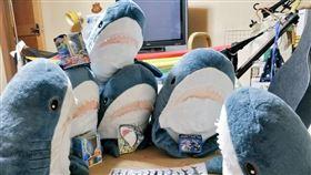 寵物,IKEA鯊魚,推特,日本。(圖/翻攝自推特)