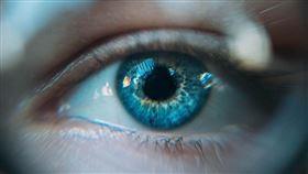 眼睛(圖/翻攝自unsplash)
