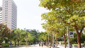政治大學 圖/翻攝自政大臉書