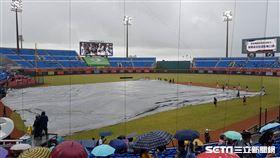 桃園棒球場賽事因雨延後。(圖/記者劉彥池攝影)