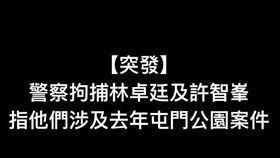 民主黨在臉書發文,香港警察清晨分別到兩人的寓所進行拘捕,指他們涉及去年屯門警署的案件,警察又指林卓廷於去年 721 事件中涉及暴動罪。(圖/翻攝自民主黨臉書)