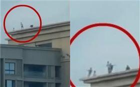 6名孩童在30層頂樓嬉戲(圖/翻攝自微博)