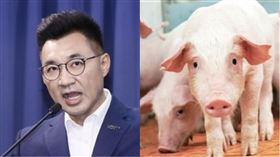 江啟臣、豬。(組合圖/資料照、農委會提供)