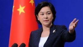 中國外交部發言人華春瑩(圖/翻攝自人民日報臉書)