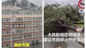 梅莎颱風橫掃中國吉林(圖/翻攝自沸點視頻)