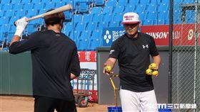 樂天桃猿賽前打擊練習打不同重量的球。(圖/記者王怡翔攝影)