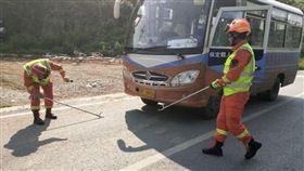 3米眼鏡蛇過馬路!客運司機停車讓路…下秒牠上車乘客嚇傻(圖/翻攝自微博)