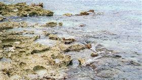 礁石 (圖/Pixabay)