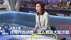 央視酸吳金平來求和(圖/范雲臉書)