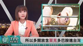 民眾黨自創「TPP News」新聞頻道。 圖/翻攝台灣民眾黨YouTube