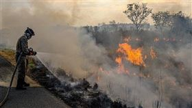 8個歐洲國家15日致函巴西副總統莫勞,抗議巴西的環境政策。圖為巴西消防人員8月13日在撲滅塞拉多草原大火。(圖/翻攝自facebook.com/bombeirosmt)