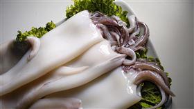 魷魚 花枝(圖/翻攝自Pixabay圖庫)