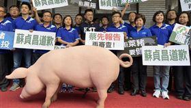 藍委 立法院 抗議 美豬 (李國綸攝)
